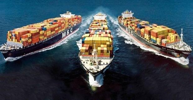 越南商品对俄罗斯出口潜力仍巨大 hinh anh 1