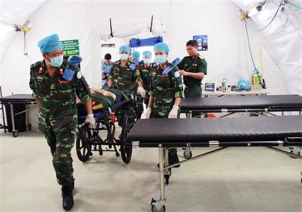 越南加入联合国 44 周年:致力于和平与可持续发展的强有力伙伴 hinh anh 3