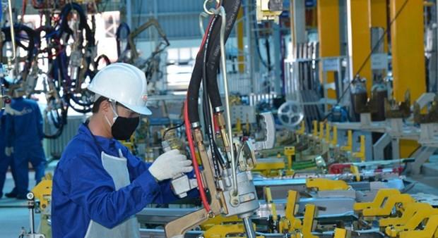 胡志明市为辅助工业企业的发展创造便利条件 hinh anh 1