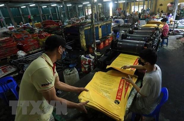 泰国SCGP公司加大对越南包装领域的投资力度 hinh anh 1