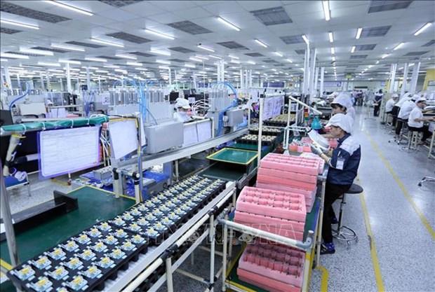 尽管经济增长放缓但亚行仍对越南经济前景持乐观态度 hinh anh 1