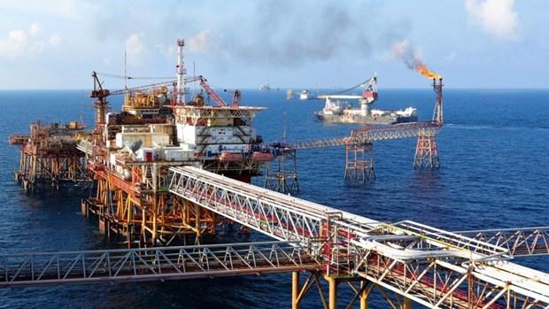 越南国家油气集团独立信用状况连续三年获惠誉国际评级的BB+评级 hinh anh 1