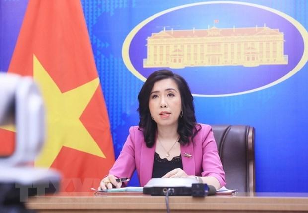 越南外交部发言人就若干国际事务阐明立场 hinh anh 1