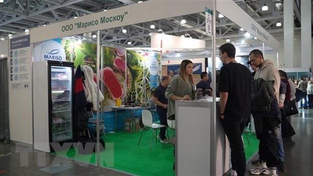 俄罗斯是越南食品潜力巨大的市场 hinh anh 1