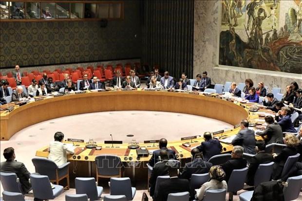越南与联合国安理会:越南重申核不扩散与核裁军的政策 hinh anh 1