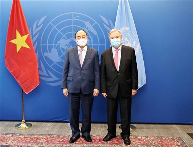 俄媒:越南是对世界可持续发展负责任的国家 hinh anh 2