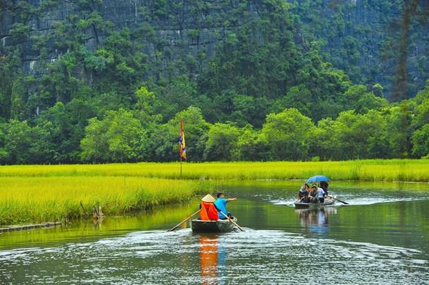 越南努力成为具有吸引力的生态旅游目的地 hinh anh 2