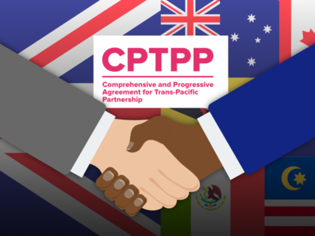 CPTPP成员讨论英国申请加入事宜 hinh anh 1