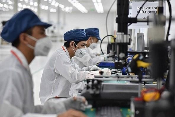 越南社会保险力争最迟在今年12月31日前完成劳动者扶持工作 hinh anh 1