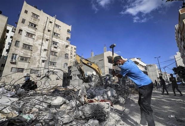 越南对加沙地带暴力活动和人道主义局势急剧恶化感到关切 hinh anh 2
