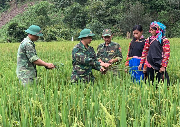 Don bay giup dong bao vung bien thoat ngheo (Bai 1) hinh anh 3