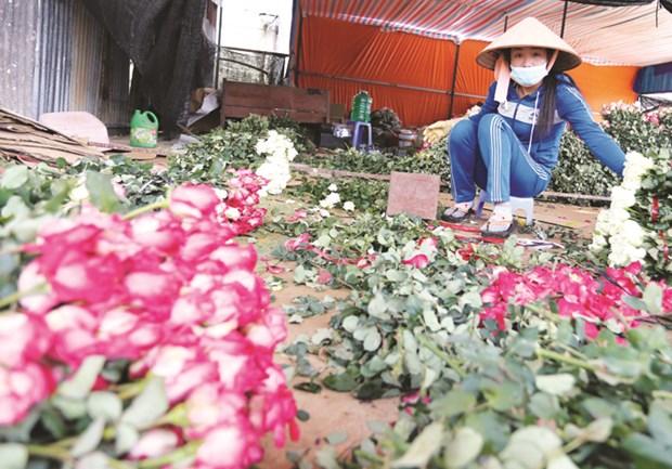 Lang hoa truyen thong Van Thanh hinh anh 2