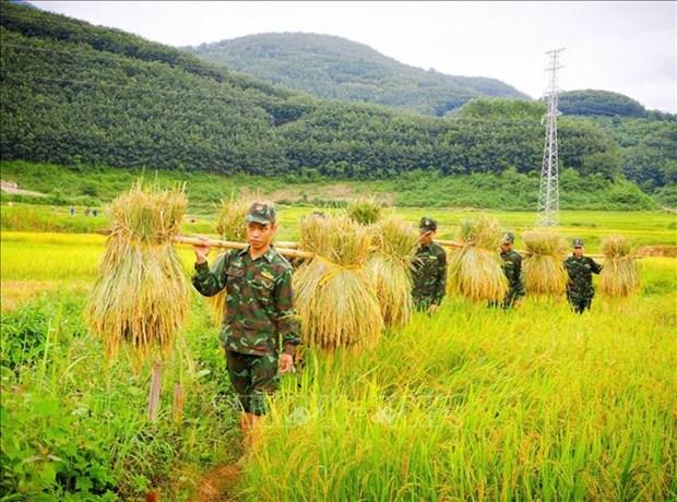 Mua vang am tinh quan dan vung ngoai long chao Muong Thanh hinh anh 1