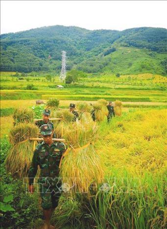 Mua vang am tinh quan dan vung ngoai long chao Muong Thanh hinh anh 3