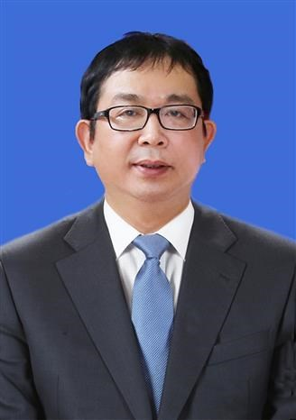 Bo nhiem ong Nguyen Tuan Hung lam Pho Tong Giam doc Thong tan xa Viet Nam hinh anh 1