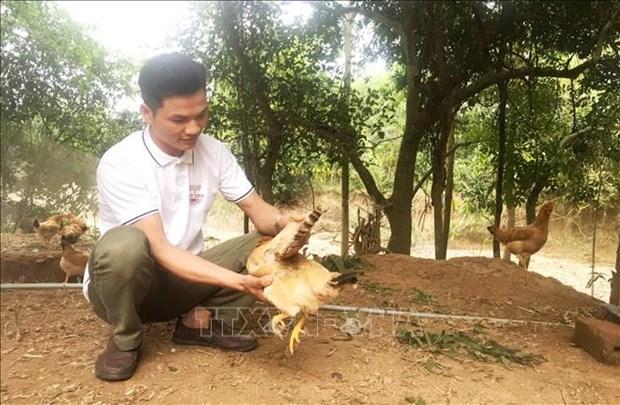 Anh Nguyen Van Nhi quyet chi lam giau tren vung doi can kho hinh anh 1