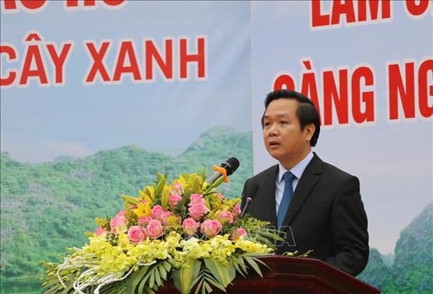 Ninh Binh phan dau trong 1 trieu cay xanh va 40 ha rung trong nam 2021 hinh anh 1