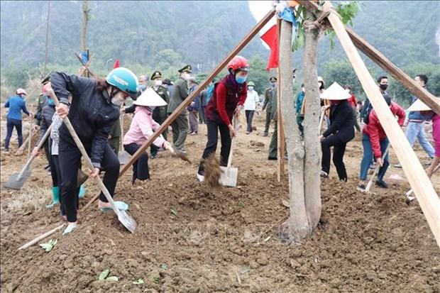 Ninh Binh phan dau trong 1 trieu cay xanh va 40 ha rung trong nam 2021 hinh anh 2
