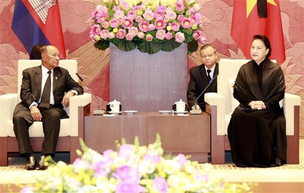 国会主席阮氏金银会见柬埔寨国会主席韩桑林 hinh anh 3