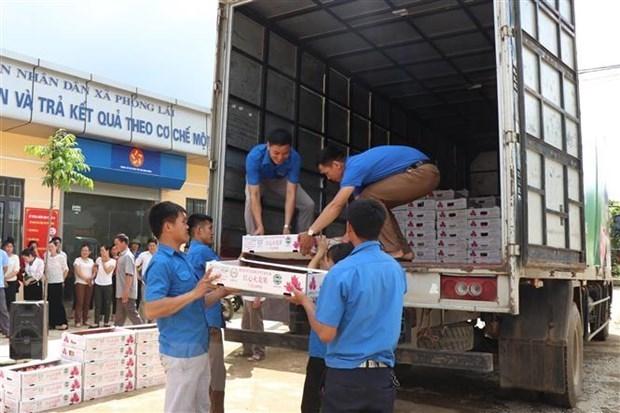 槟椥省对欧盟市场出口首批水果 hinh anh 1