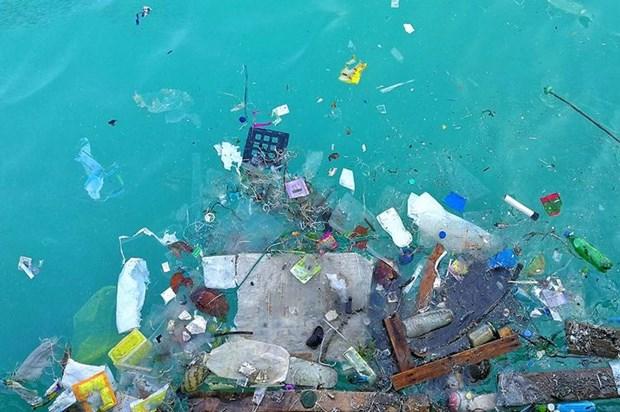 越南将建立国际海洋塑料垃圾中心 hinh anh 1