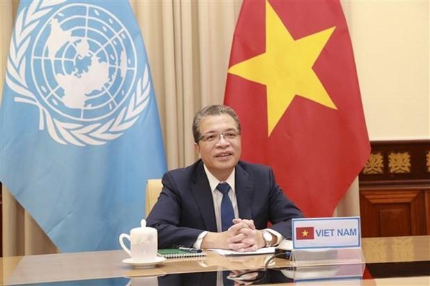 越南与联合国安理会:联合国安理会海湾地区局势部长级视频会议举行 hinh anh 1