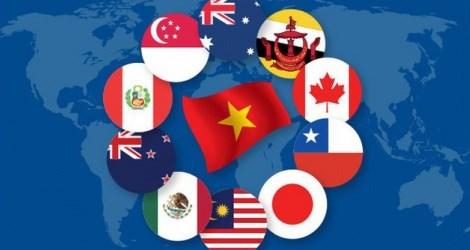 各项FTA让流入越南的外资增加 hinh anh 1