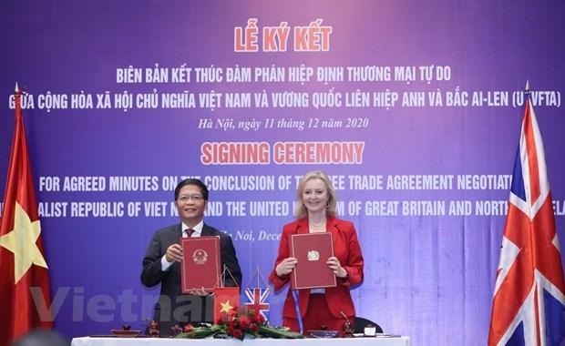 UKVFTA对越南和英国具有巨大的切实意义 hinh anh 2