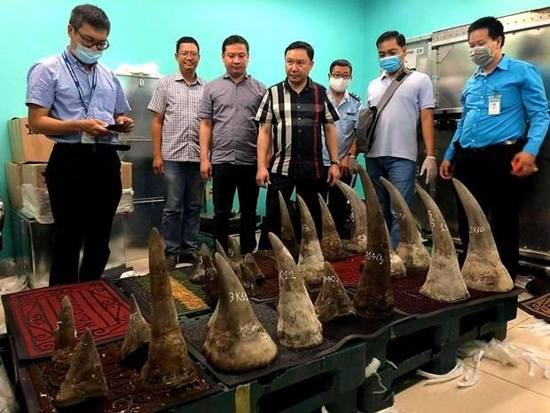 在新山一机场发现超过90公斤重的疑似犀牛角 hinh anh 1