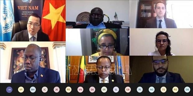 越南与联合国安理会:越南高度评价南苏丹局势取得的积极进展 hinh anh 1
