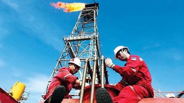 新冠肺炎疫情:石油勘探开采总公司保持生产稳定和安全 hinh anh 1