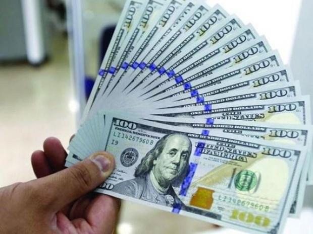 3月1日上午越盾对美元汇率中间价下调15越盾 hinh anh 1