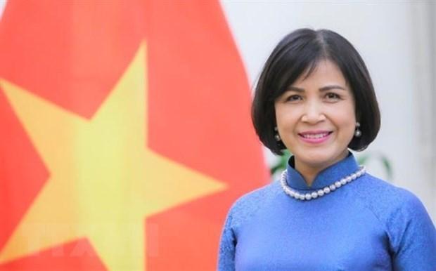 越南出席世贸渔业补贴规则谈判小组会议 hinh anh 1