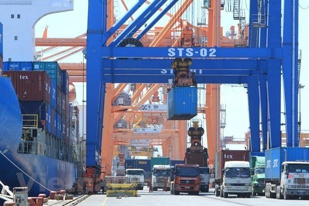 2021年前2个月越南的商品进出口总值同比增长24.5% hinh anh 2