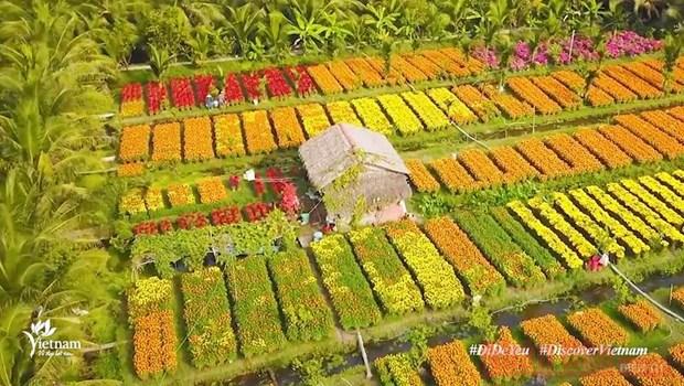 通过数字平台广泛宣传推介越南风土人情之美 hinh anh 1