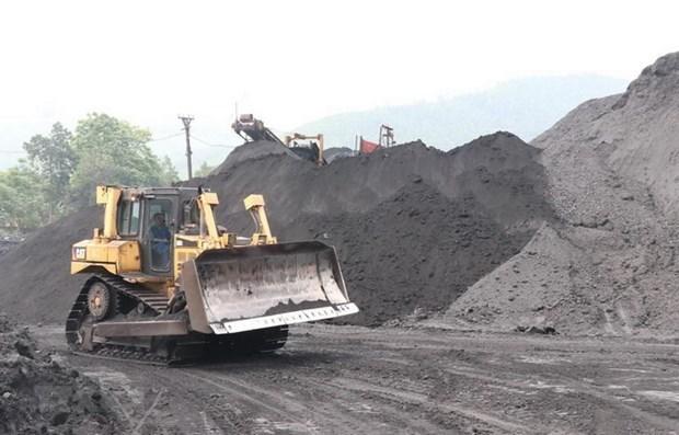 促进东南亚矿产领域的合作 hinh anh 1