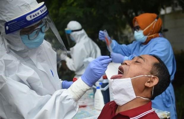 东南亚新冠肺炎疫情最新进展 hinh anh 1