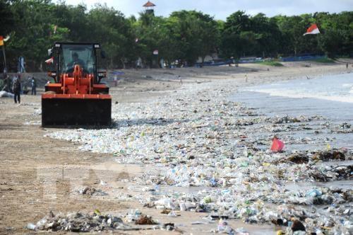 东盟与挪威合作防治塑料垃圾污染 hinh anh 1