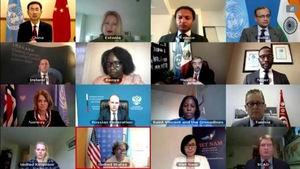 越南与联合国安理会:越南呼吁促进缅甸对话和解 寻求妥当解决方法 hinh anh 1