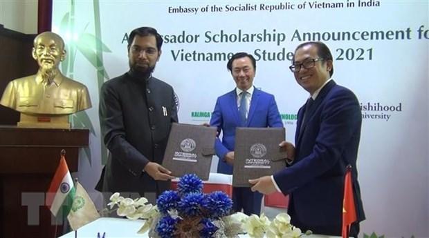 印度各所大学为越南学生发放100多份助学金 hinh anh 1