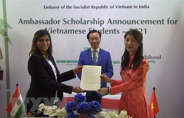 印度各所大学为越南学生发放100多份助学金 hinh anh 2