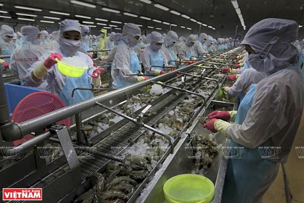 将水产业发展成为国家经济拳头产业 hinh anh 1