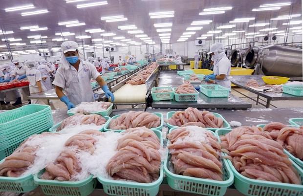 将水产业发展成为国家经济拳头产业 hinh anh 2