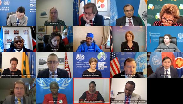 越南与联合国安理会:越南呼吁加大努力 保护刚果民主共和国的平民 hinh anh 1