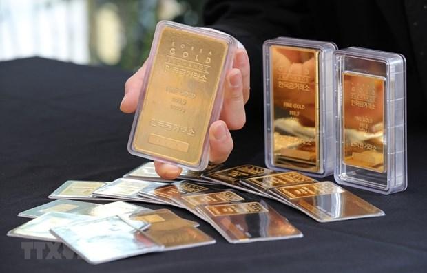 今日上午越南国内市场黄金价格持续下跌 hinh anh 1