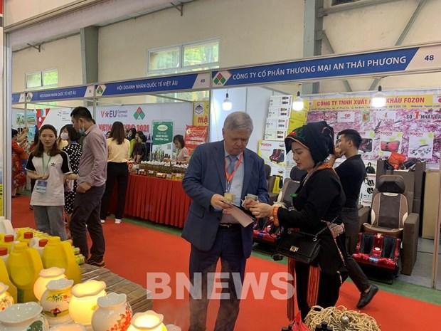 Vietnam Expo 2021:数字纪元中与企业同行 hinh anh 1