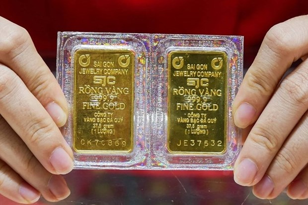 14日上午越南国内市场黄金价格每两上涨17万越盾 hinh anh 1