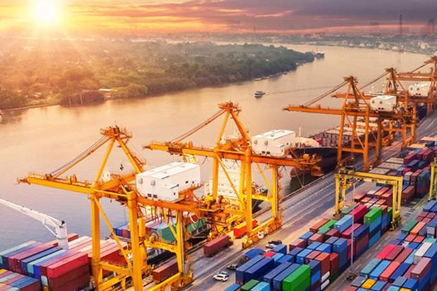 越南经济与政策研究院: 2021年越南经济增长率有望达6.3% hinh anh 2