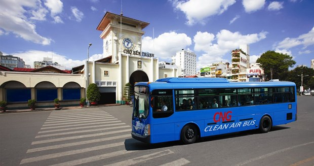 胡志明市着力发展清洁燃料公交车 hinh anh 1