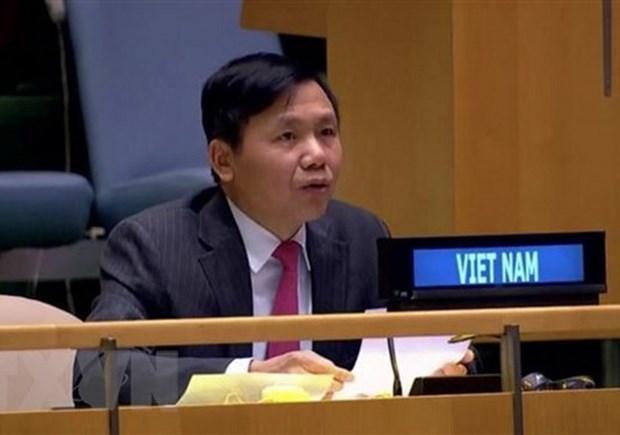 越南与联合国安理会:越南支持促进波黑和解及经济发展的努力 hinh anh 1